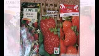 купить семена овощей в россии(, 2015-02-08T16:59:37.000Z)