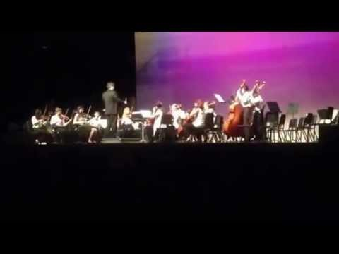 Cedarbrook Middle School Chamber Orchestra