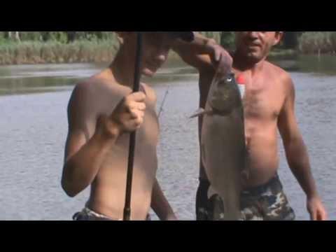 Рыбалка на толстолоба в краснодарском крае