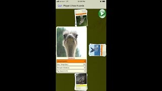 Match4App: Animals Card Match Up Game For Kids and babies, Free App for Android and iOS