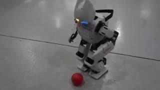 [한국기술교육대학교] 휴머노이드 로봇 - 다윈 OP2