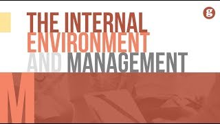 The Internal Enviornment and Management