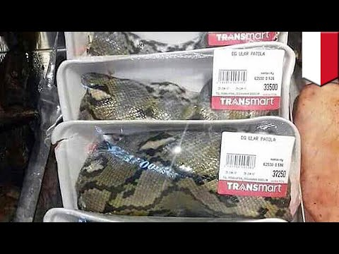 Snake meat is on sale at Carrefour-owned supermarket in Indonesia - TomoNews