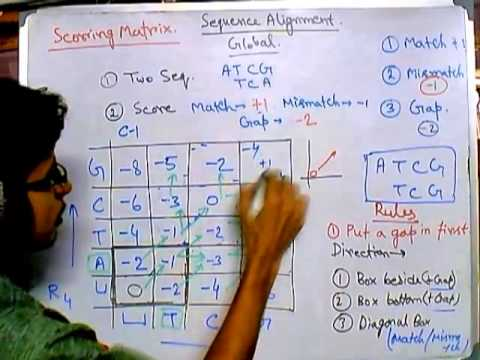 Bioinformatics part 7 How to perform Global alignment 1