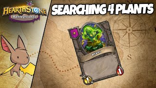The Constant Search for Plant Friends | Firebat Hearthstone Battlegrounds