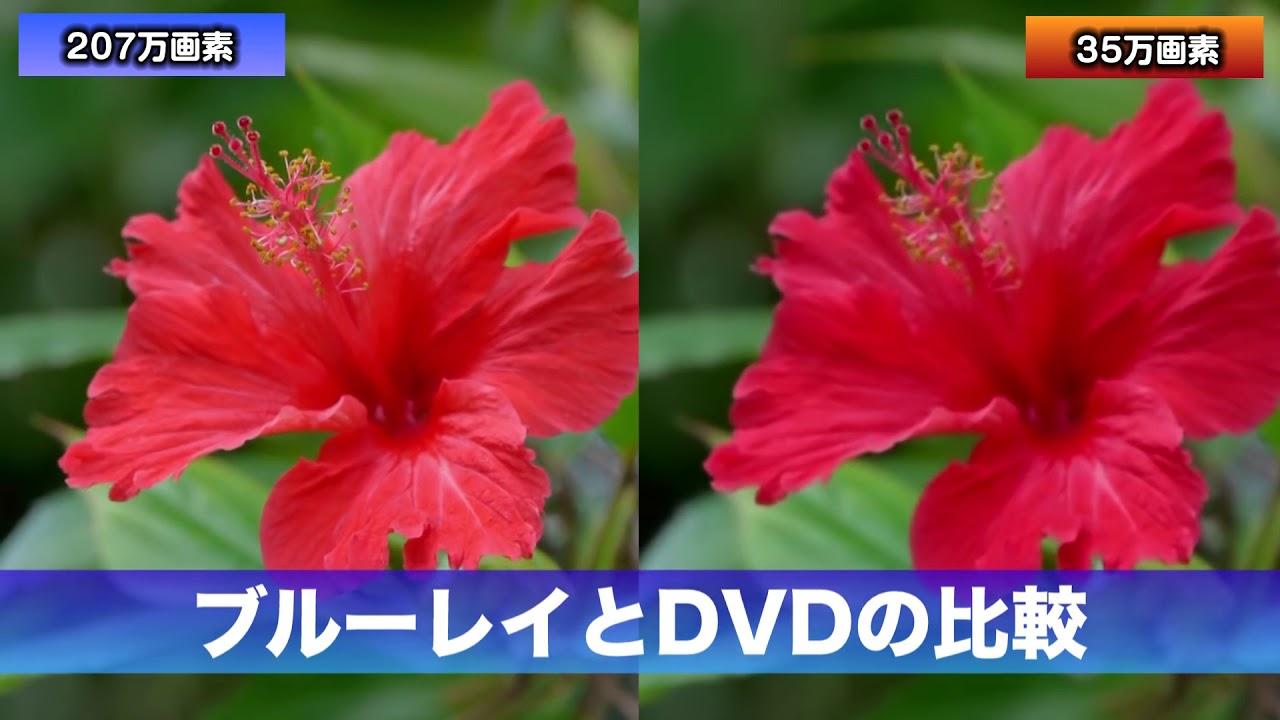 ブルーレイ 違い dvd
