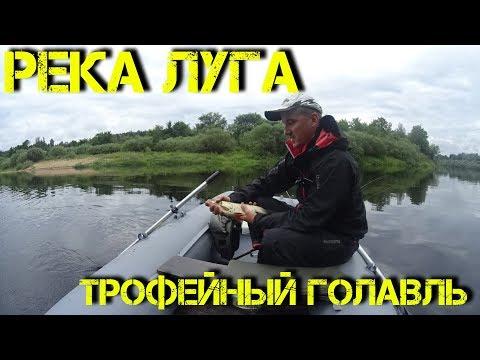 Прогноз погоды в Луге - погода в Луге (Россия