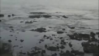 En 4 minutos se retiro y subió el mar tras el Terremoto chile 2010