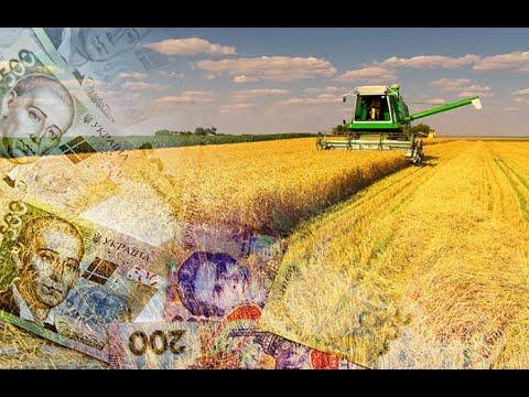 7 прогнозов на аграрный сезон 2020 года