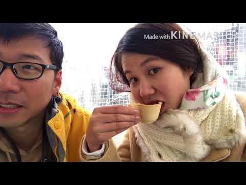 Vlog: Japan 2018 EP1 Tokyo and Takayama