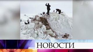 Смотреть видео Ледяной вал недалеко от Санкт-Петербурга стал местной достопримечательностью. онлайн