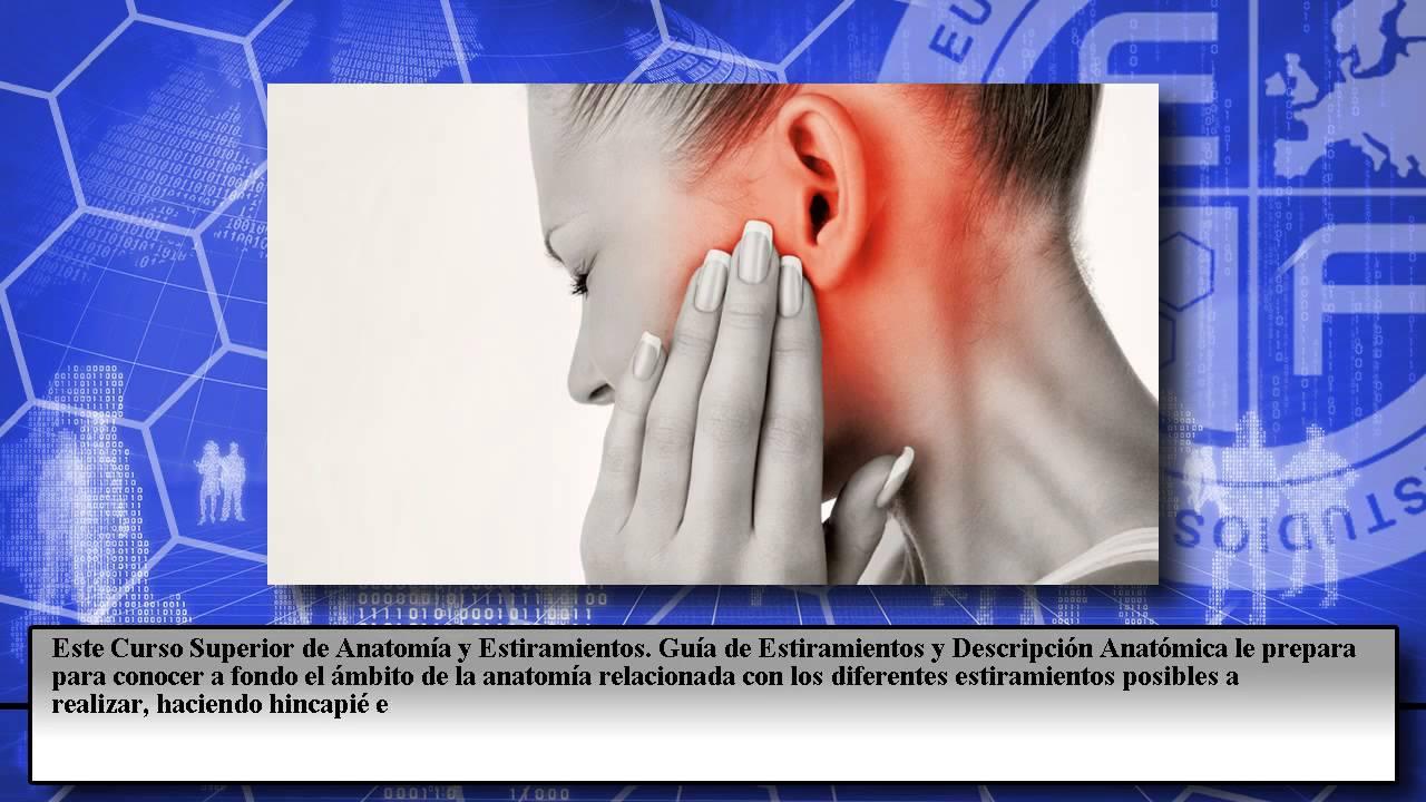 Curso Anatomia Estiramientos Descripcion Anatomica - Cursos Online ...