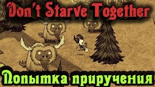 Don't Starve Together - ОХОТА на Бифало