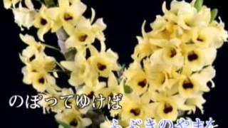 永芳龍年日語歌輯5.