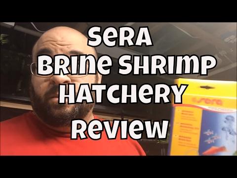 sera-artemia-breeding-kit-unboxing-2-litter-brine-shrimp-hatchery-angel-fish-fry