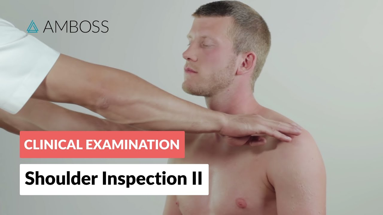 Palpation Of The Shoulder Region Clinical Examination Amboss