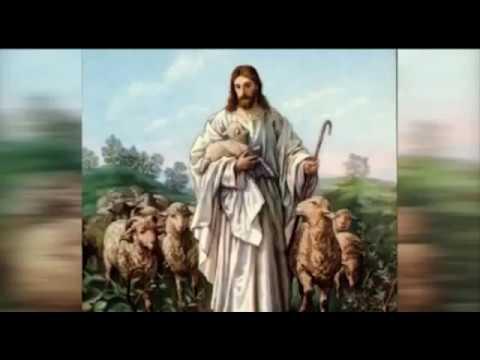 El amor de Jesus por los Animales que nos fue ocultado