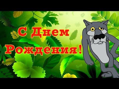 С Днем Рождения от Волка. Прикольное поздравление