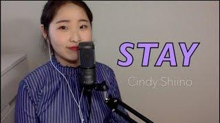 STAY -Japanese Ver.(Black Pink) -Cindy Shiino