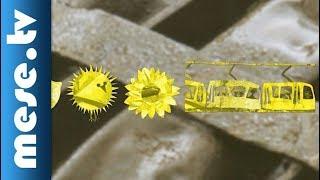 Színek Könyve: Sárga - tanulás kicsiknek