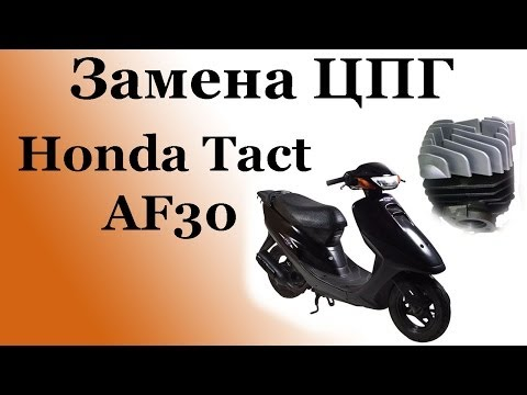 СВОИМИ РУКАМИ: Замена ЦПГ на скутере Honda Tact AF30