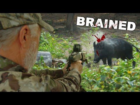 Pistol OBLITERATES Hog at 50 yards!