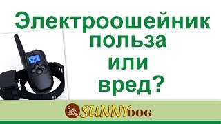 видео Отзывы об ошейниках для собак крупных и маленьких
