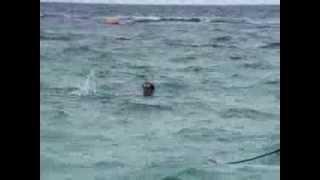 Уроки плавания для детей 1