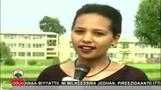 Korri qorannoo aadaafi Afaan Oromoo Yuunivarsitii Mattuutti taa'ameera  OBN Ebla 13, 2011