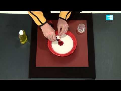Arte Lácteo - Experimentos Caseros - Proyecto G