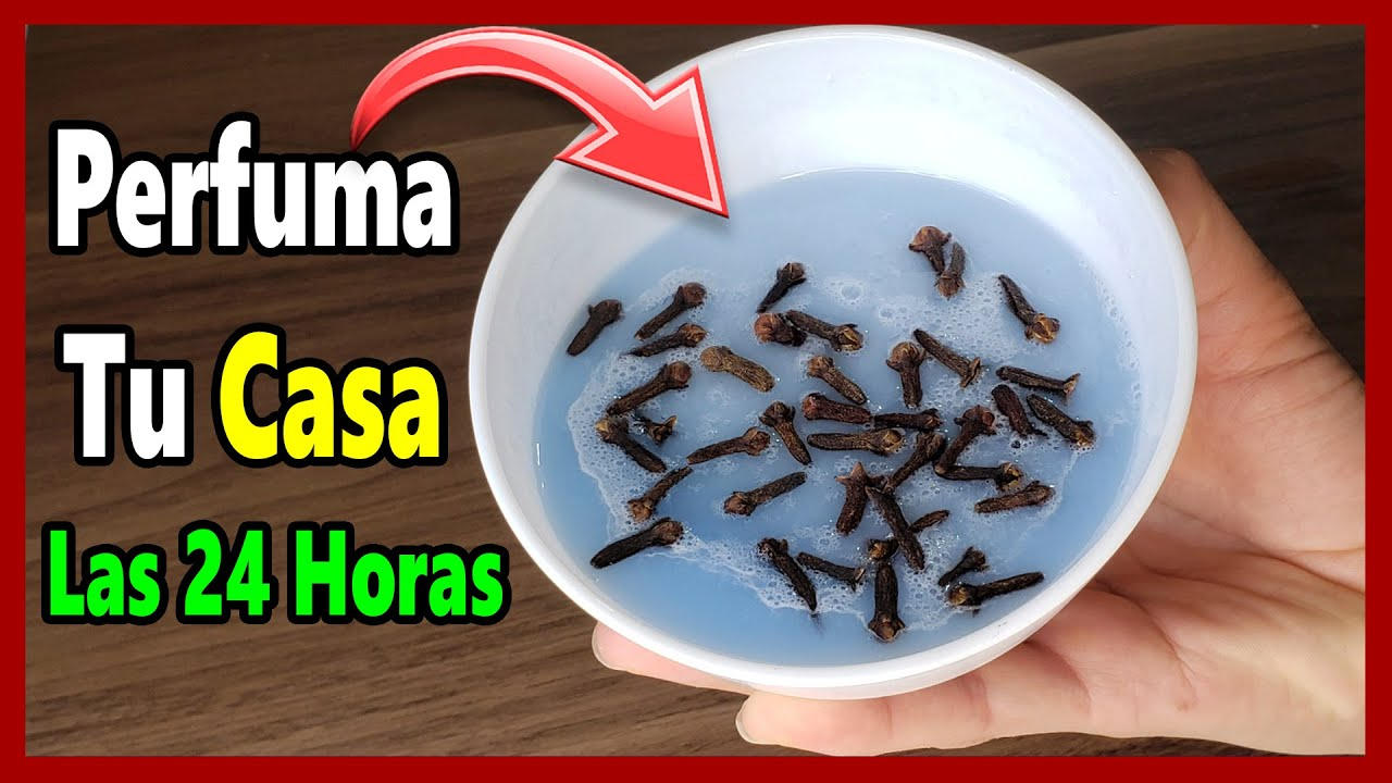 Si Mezcla Clavos de Olor con Suavizante, Despídete de las moscas, mosquitos y perfuma tu casa.