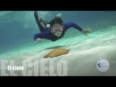 Dive Palancar, cozumel diving, snorkeling and scuba dive