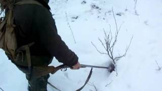 В лисьей норе кто-то есть!.avi(, 2011-02-01T13:32:14.000Z)
