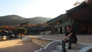 BEAUTIFUL BUSAN in One Day - SOUTH KOREA