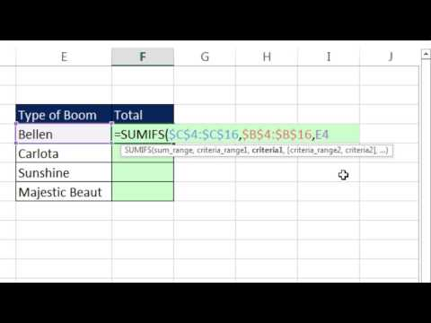 "Excel Magic Trick 1237: Add with ""Contains Criteria"" or Partial Text Criteria: SUMIFS & Wildcard"
