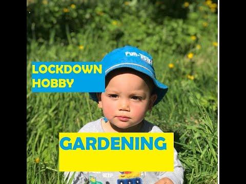 Lockdown Hobby…First time gardener.