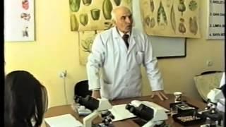 Toxumun quruluşu, birləpəli və ikiləpəli bitkilərdə cücərtinin morfologiyası (Vaqif Həsənov)