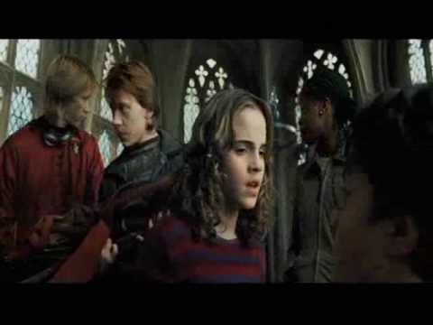 We are Gonna Happen - Ron and Hermione