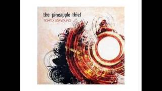 "The Pineapple Thief - ""My Bleeding Hand"""