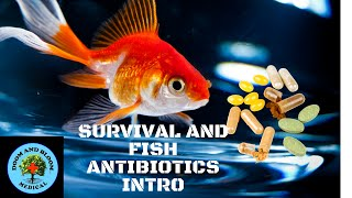 Intro To Survival and Fish Antibiotics
