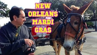 New Orleans during Mardi Gras