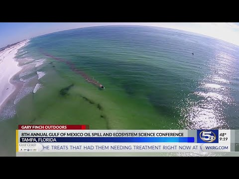 10 Years Since The Deepwater Horizon Oil Spill