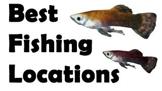 Skyrim: best fishing locations, All Fish Guide (Part One)