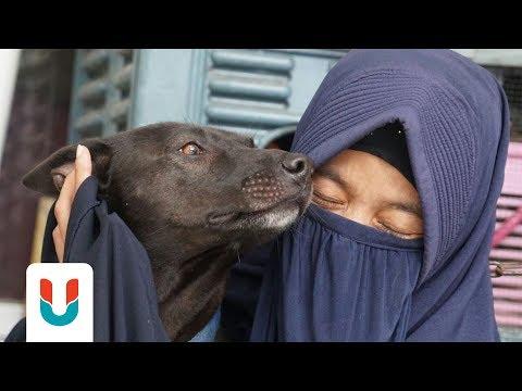 Kisah Hesti Sutrisno, Perempuan Bercadar yang Rawat 11 Anjing