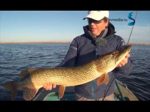 рыбалка с алексеем шаниным