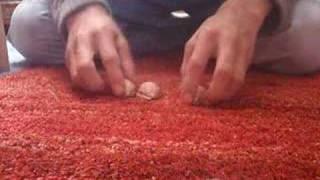 Hütchenspiel Shell game