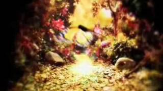 Paramore - Adore (Music Video)