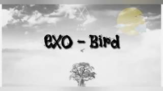 Exo - Bird Lyrics Sub Indo