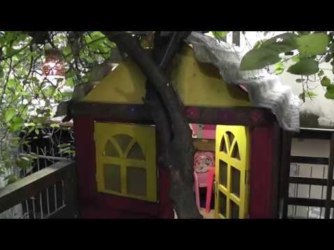Видео Criatividade atrelada ao Jeitinho Brasileiro