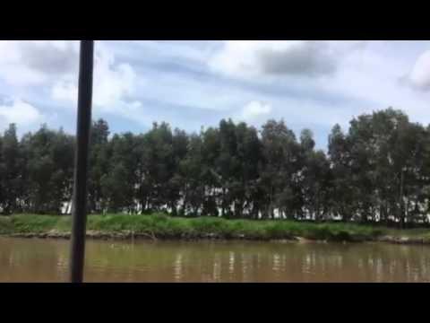Khu du lịch tràm chim - Đồng Tháp